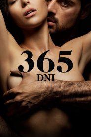365 dni pobierz