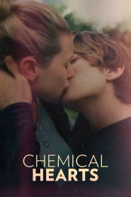 Chemical Hearts pobierz
