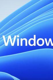 Windows 11 pobierz